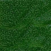 Miyuki Delica Perlen 1,6mm DB0746 transparent matt Kelly Green 5gr