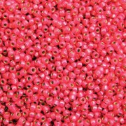 Miyuki Rocailles Perlen 2mm 4239 Duracoat Silverlined Hot Pink ca 24gr