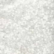 Miyuki Delica Perlen 1,6mm DB0635 Silk Satin Crystal 4gr