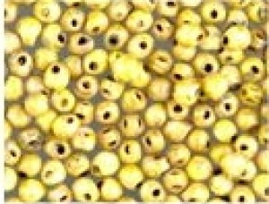 Miyuki Tropfen Perlen 3,4mm 4512 opaque Yellow Picasso ca 10gr